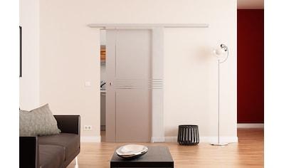 Glastürkontor Hamburg Glastür »MUTO Comfort M 60«, Idea, mit Muschelgriff kaufen