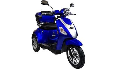 Rolektro Elektromobil »Rolektro E-Trike 25 V.3«, 1000 W, 25 km/h, (mit Topcase) kaufen