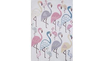 Sanat Kinderteppich »Luna Kids 4612«, rechteckig, 12 mm Höhe, bunte Flamingos, Kurzflor kaufen