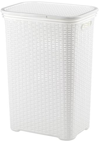kela Wäschebox »Brasilia«, (1 St.), 60 Liter kaufen