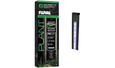 "FLUVAL LED Aquariumleuchte »Fluval Plant 3.0 LED 15-24""«, 38-61 cm kaufen"