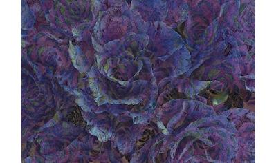 Consalnet Papiertapete »Violette Blumen«, floral kaufen