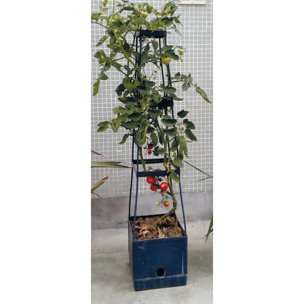Think Garden Pflanzkübel »Tomaten Tower«