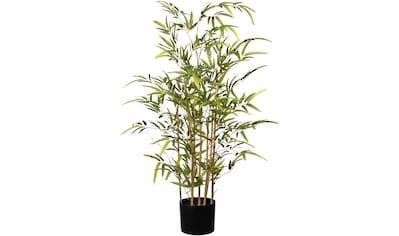 Creativ green Kunstbaum »Bambus« kaufen