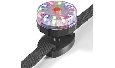 MAXXMEE SUP-Leuchte »Unterwasser 360°« kaufen
