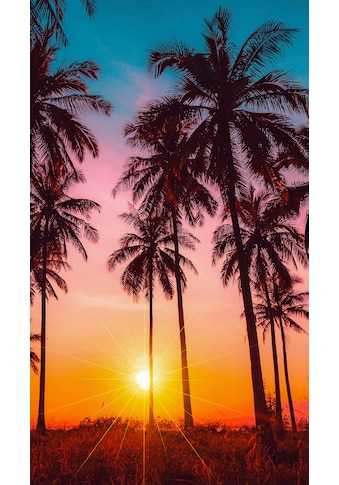 good morning Strandtuch »Bora Bora«, (1 St.), mit Palmen kaufen