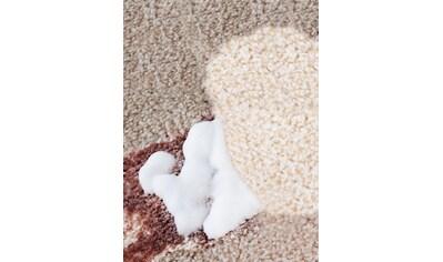 Teppich - und Polster - Rein kaufen