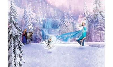KOMAR Set: Fototapete »Frozen Forest«, Ausgezeichnet lichtbeständig kaufen