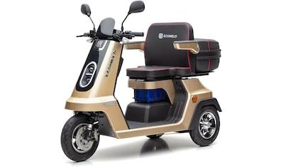 ECONELO Elektromobil »SF1000«, 1000 W, 25 km/h (mit Topcase) kaufen