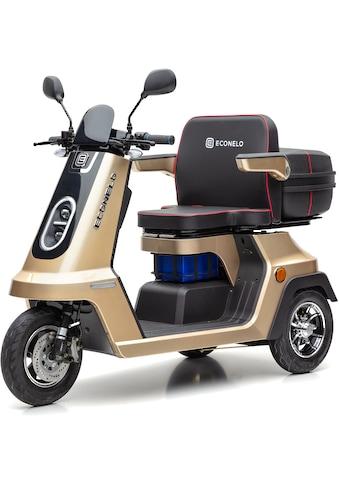ECONELO Elektromobil »SF1000«, 1000 W, 25 km/h, (mit Topcase) kaufen