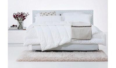 Kunstfaserbettdecke, »Vital Plus«, Centa - Star, Bezug: 100% Baumwolle kaufen