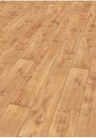EGGER Laminat »HOME Vinstra Eiche honig«, 2,481 m²/Pkt., Stärke: 7 mm kaufen