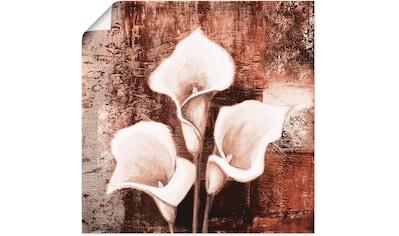 Artland Wandbild »Antike Callas  -  braun« kaufen