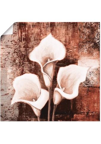Artland Wandbild »Antike Callas - braun«, Blumen, (1 St.), in vielen Größen & Produktarten -Leinwandbild, Poster, Wandaufkleber / Wandtattoo auch für Badezimmer geeignet kaufen