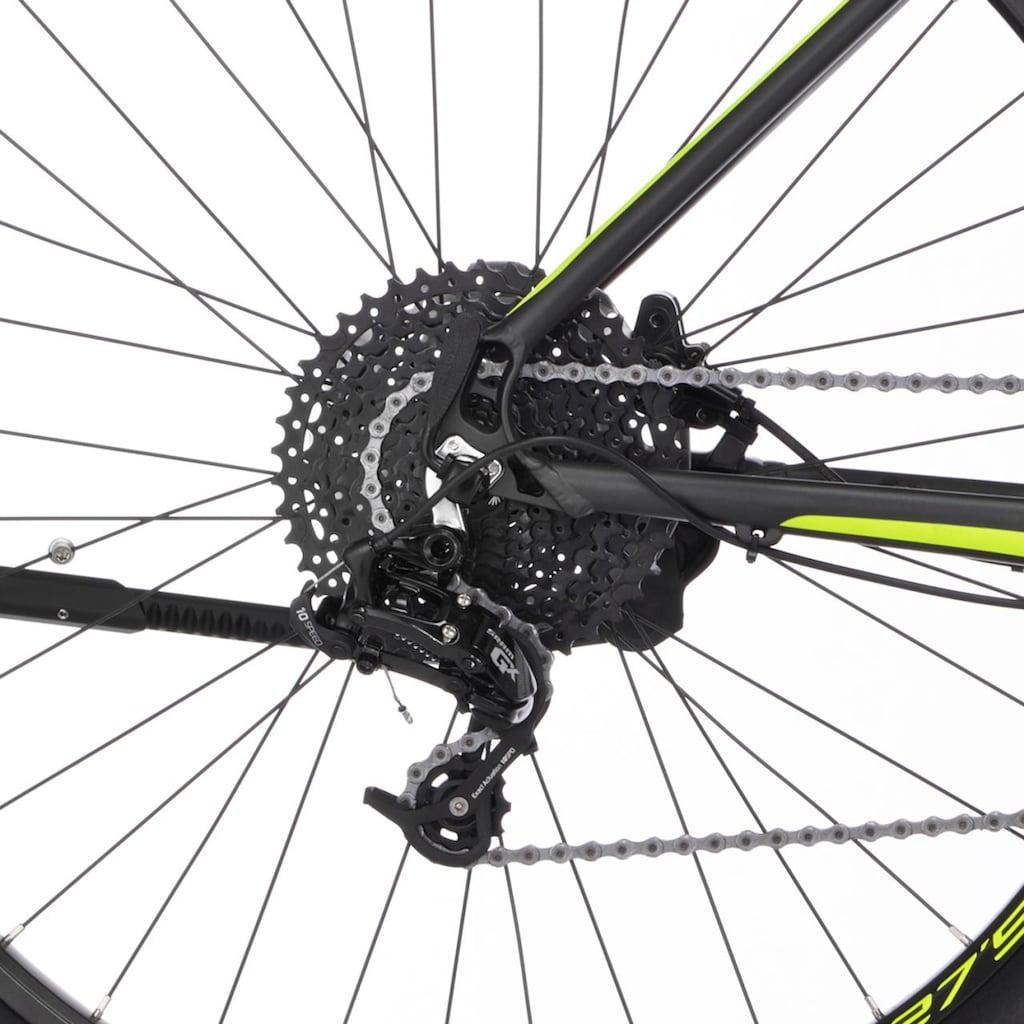 FISCHER Fahrräder E-Bike »MONTIS 5.0i LE«, 10 Gang, SRAM, GX10, Mittelmotor 250 W