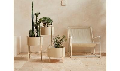 LeGer Home by Lena Gercke Pflanzkübel »Ruby«, Zeitloses Design, Gestell aus Metall kaufen