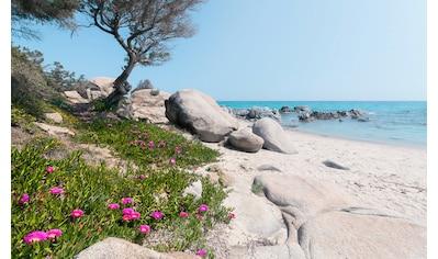 Komar Fototapete »Mediterrane Träume«, mehrfarbig-natürlich-bedruckt kaufen