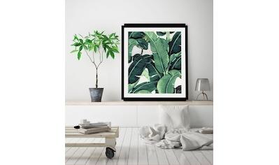 Bild »Blätter« kaufen