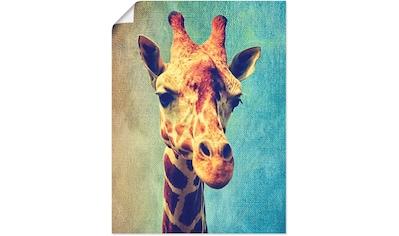 Artland Wandbild »Die Giraffe«, Wildtiere, (1 St.), in vielen Größen & Produktarten... kaufen