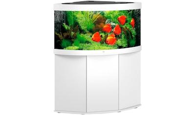 JUWEL AQUARIEN Aquarien-Set »Trigon 350 LED + SBX Trigon 350«, BxTxH: 123x87x138 cm, 350 l, mit Unterschrank kaufen
