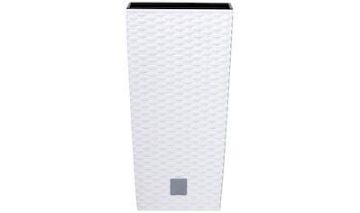 Prosperplast Pflanzkübel »Rato square«, BxTxH: 28,7x28,7x55 cm kaufen