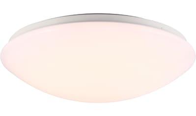 Nordlux LED Außen-Deckenleuchte »Ask 36 Sensor«, LED-Board, Warmweiß kaufen