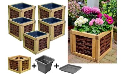 T&J Blumenkasten »Alexandria 3«, 5er Set, BxTxH: 40x40x32 cm kaufen