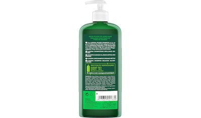 LOGONA Haarshampoo »Logona Pflege Shampoo Bio-Brennnessel« kaufen