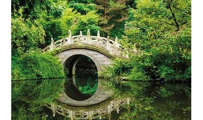 Papermoon Fototapete »Japanese Garden« kaufen
