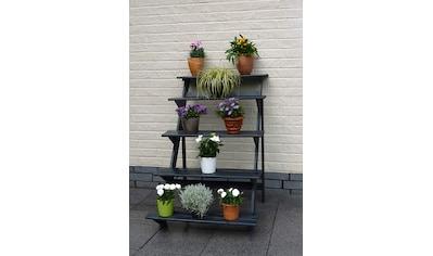 promadino Blumenständer »Blummentreppe«, BxTxH: 78x100x109 cm kaufen