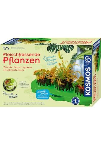 Kosmos Experimentierkasten »Fleischfressende Pflanzen«, Made in Germany kaufen