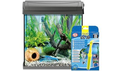 TETRA Aquarien - Set »AquaArt LED«, BxTxH: 38,5x28x43 cm, 30 Liter, inkl. GC30 Bodenreiniger kaufen