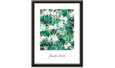 Artland Wandbild »Dschungelpflanzen«, Sprüche & Texte, (1 St.) kaufen