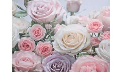 Komar Fototapete »Floraison«, bedruckt-Wald-geblümt, ausgezeichnet lichtbeständig kaufen
