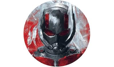 Komar Fototapete »Avengers Painting Ant-Man«, bedruckt-Comic-Retro-mehrfarbig, BxH:... kaufen