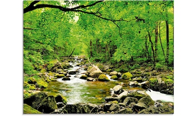 Artland Glasbild »Herbstwald Fluss Smolny«, Wald, (1 St.) kaufen