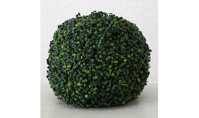 BOLTZE Künstliche Zimmerpflanze »Kunstpflanze Buchsbaum« kaufen