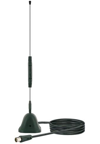 SCHWAIGER passive DVB - T2 Antenne innen für Receiver und Fernserher »HD TV, Radio, DAB+, UKW« kaufen