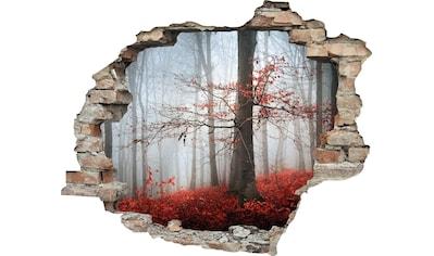 queence Wandtattoo »Wald im Herbst« (1 Stück) kaufen