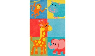 Kinderteppich, »Kids 1365«, Böing Carpet, rechteckig, Höhe 10 mm, handgetuftet kaufen