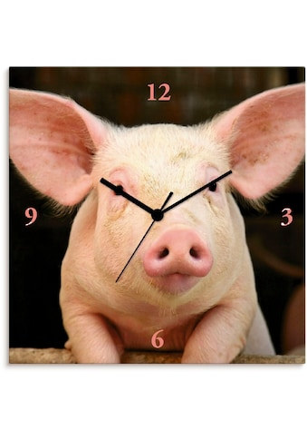 Artland Wanduhr »Vorwitziges Schwein«, lautlos, ohne Tickgeräusche, nicht tickend,... kaufen