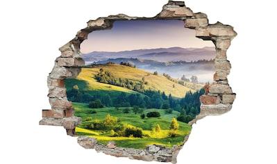 queence Wandtattoo »Hügel« kaufen