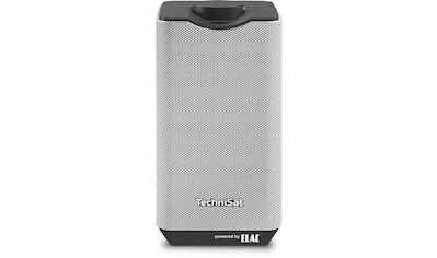 TechniSat Lautsprecher »Audiomaster MR1« kaufen