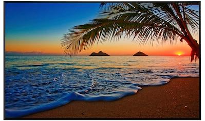 Papermoon Infrarotwandheizung »Lanikai Beach Hawaii«, sehr angenehme Strahlungswärme kaufen