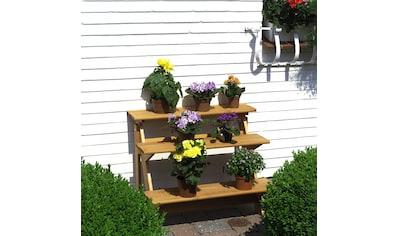 promadino Blumenständer »Blummentreppe«, BxTxH: 78x55x62 cm kaufen