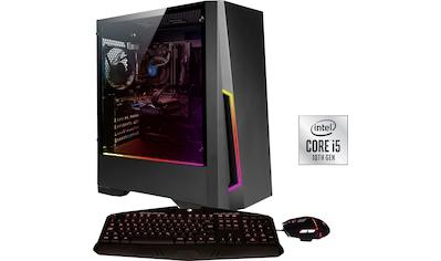 Hyrican Gaming-PC »Pandora 6563« kaufen
