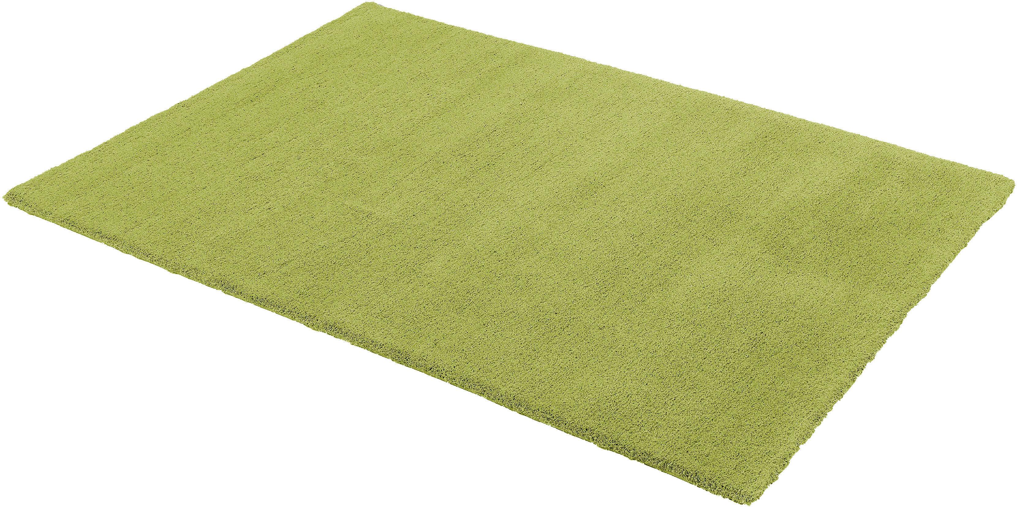 Teppich, »Livorno«, ASTRA, rechteckig, Höhe 27 mm, maschinell getuftet