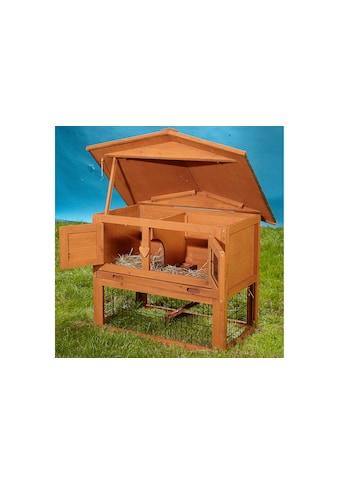 SILVIO design Kleintierstall »Bobby«, BxTxH: 80x70x70 cm kaufen