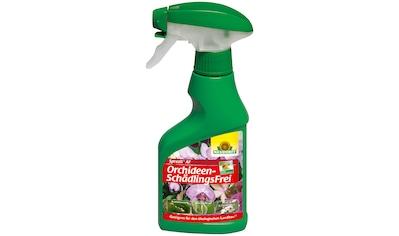 Neudorff Pflanzenschutzmittel »Spruzit AF Orchideen-Schädlings Frei«, 250 ml kaufen
