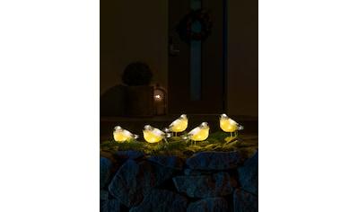KONSTSMIDE LED Acryl Vögel, 5er - Set kaufen